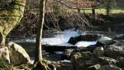 River Walkham Valley and Buckland Monachorum