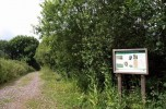 Knapp Copse Local Nature Reserve